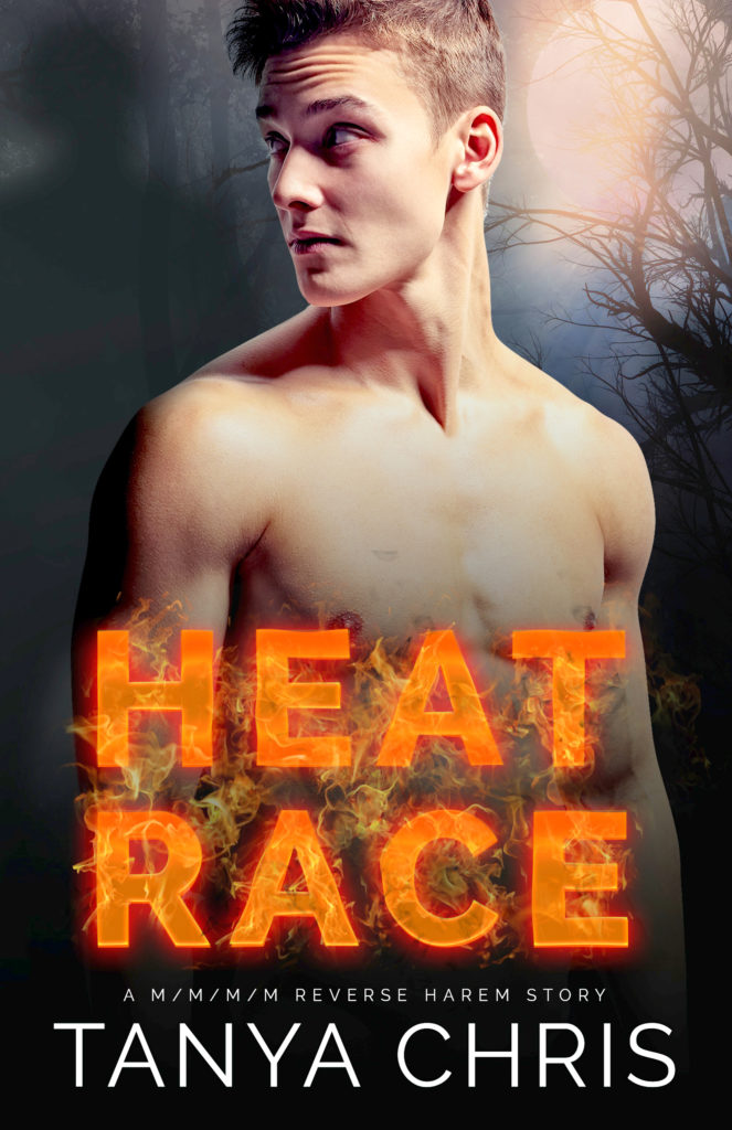Book Cover: Heat Race